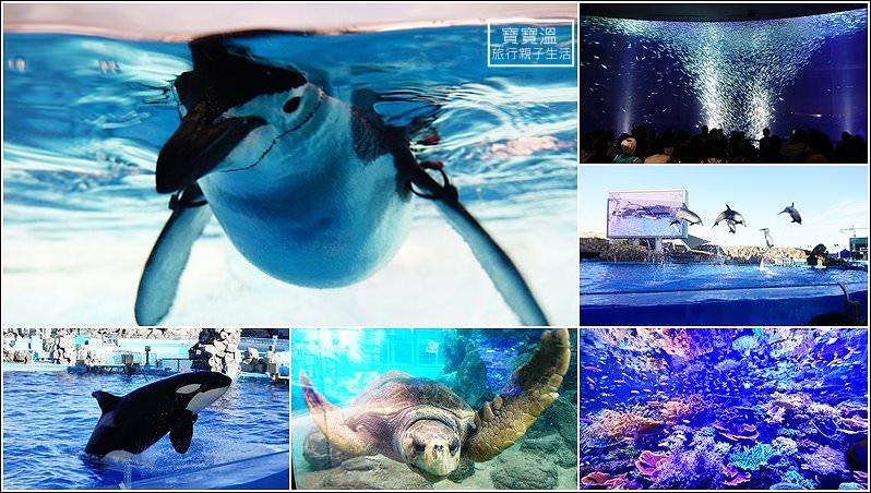 日本名古屋親子自由行 | 名古屋港水族館~世界最大級海豚、殺人鯨、沙丁魚表現秀,還有冬季限定企鵝走路秀,票價超便宜高CP值的親子必玩景點
