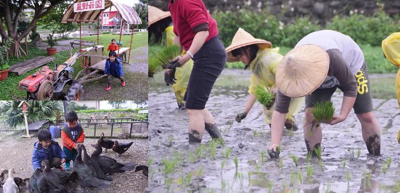 < 宜蘭親子景點 > 麗野莊園農場~插秧、餵鴨、撿鴨蛋、鐵牛BUS農村體驗半日遊
