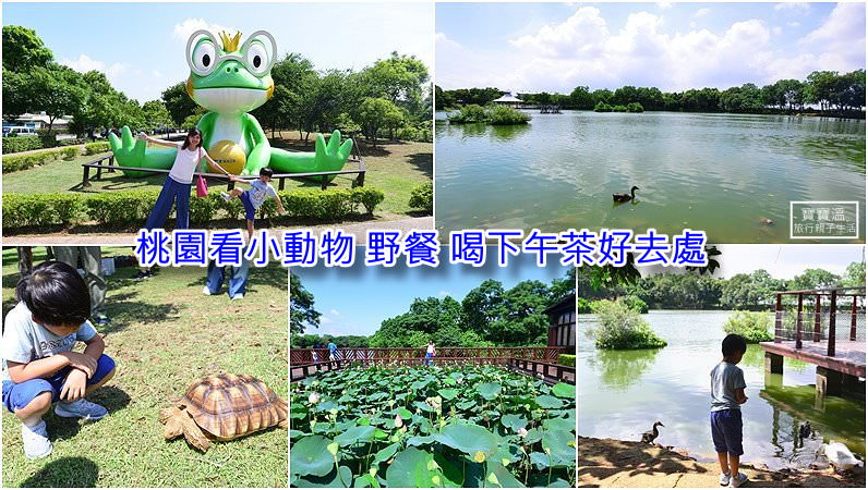 桃園親子踏青 | 八德埤塘生態公園,小雲山水景色、野餐看小動物假日好去處