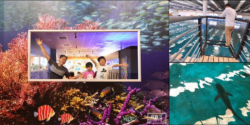 宜蘭礁溪親子景點 |  金車生技水產養殖研發中心,免費看海洋生物水族館,2019新增空中景觀台鯊魚就在腳下