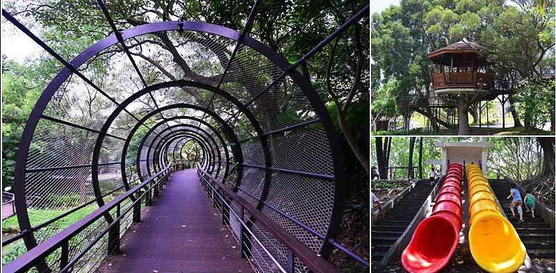 【桃園一日遊親子景點 】 奧爾森林學堂~全新森林步道登場,還有貓頭鷹樹屋、雙筒溜滑梯等著你