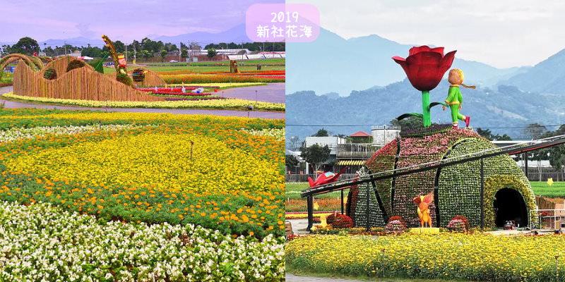 2019台中新社花海小王子來助陣,交通管制、接駁車、停車資訊,新社一日遊周邊景點