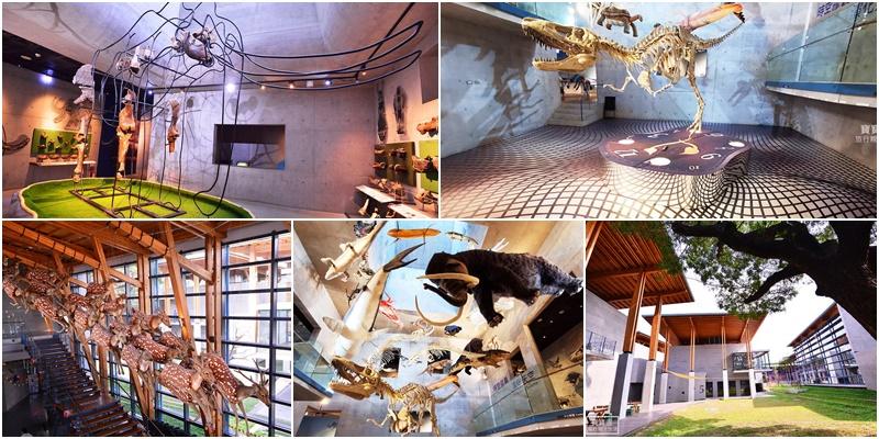 台南親子景點》臺南左鎮化石園區,五大主題館完整攻略,全台唯一化石主題博物館,恐龍迷別錯過了