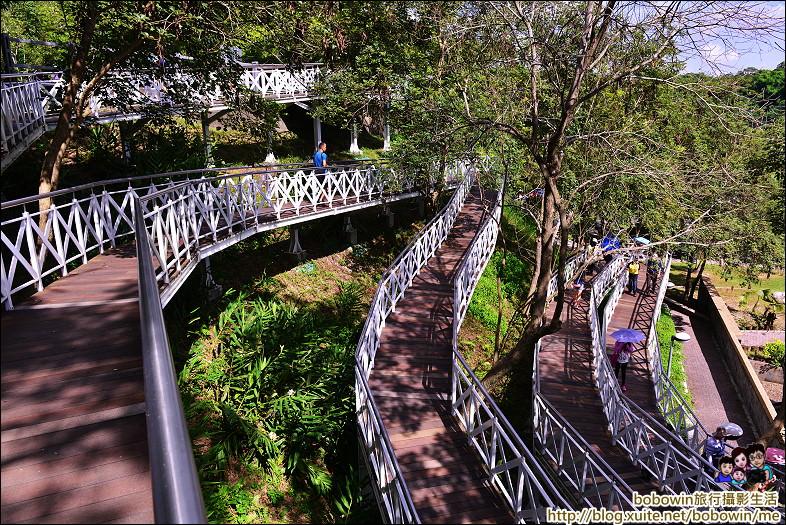 【嘉義天空步道】竹崎親水公園 花仙子森林步道 穿梭在樹之巔的天空廊道