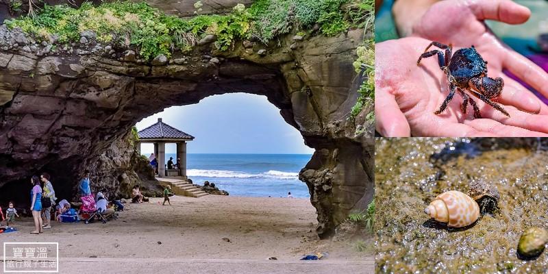 新北石門景點》石門洞,石門潮間帶玩水找生態, 貝殼沙灘海岸步道, 吃十八王宮劉家肉粽