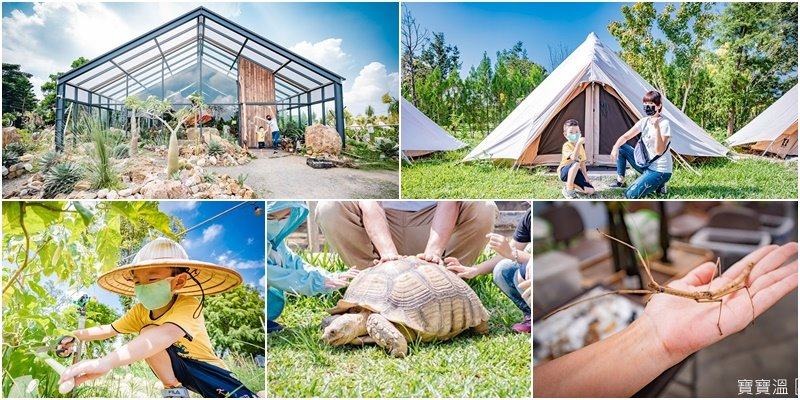 苗栗自然圈農場新企畫|農野遊獵親子一日遊,  專人農事導覽, 手作絹印DIY, 昆蟲生態觀察