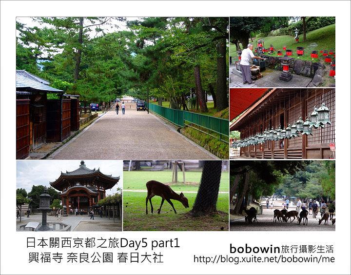 [ 日本關西京都之旅 ] Day5 part1 興福寺 奈良公園 春日大社