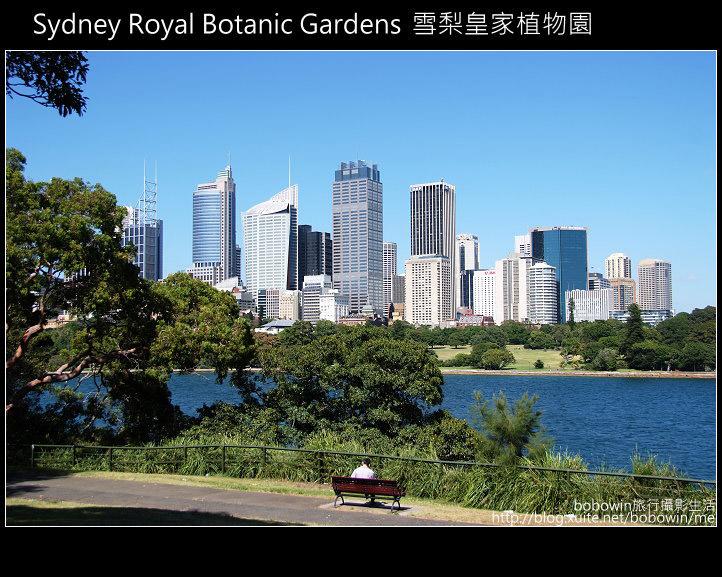 [ 澳洲 ] 雪梨皇家植物園 Sydney Royal Botanic Gardens