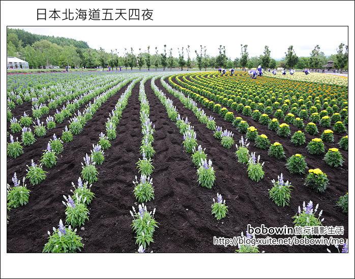 [ 日本北海道之旅 ] Day2 Part2 富良野富田農場賞花吃哈密瓜
