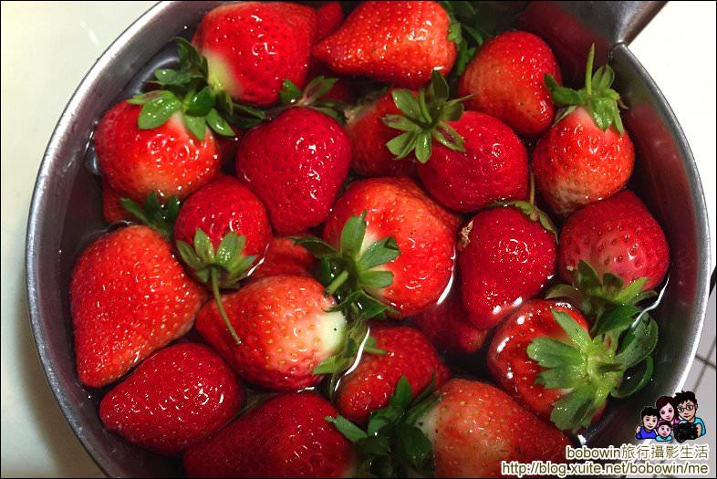IMG_4300.JPG - 苗栗馬拉邦山採草莓