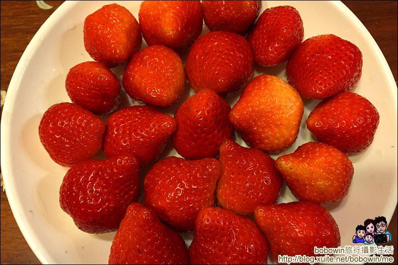 IMG_4305.JPG - 苗栗馬拉邦山採草莓