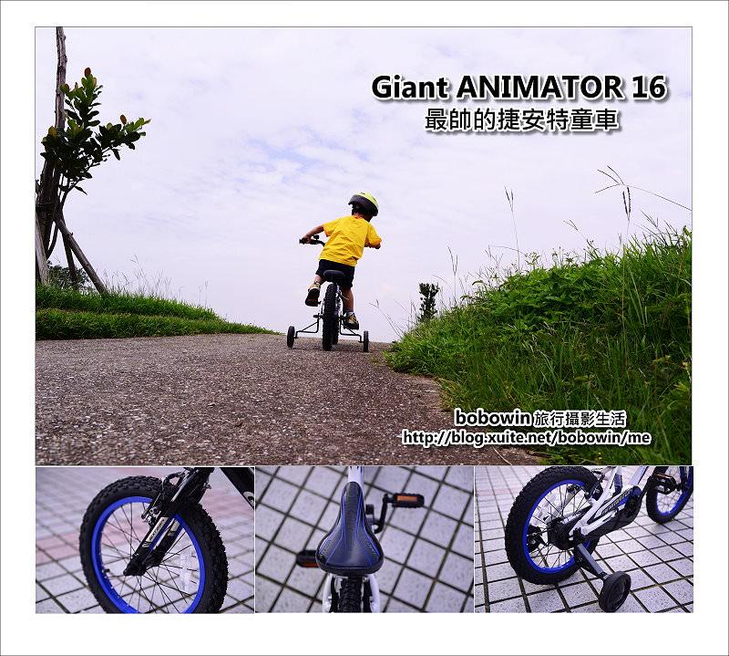 [ 兒童腳踏車推薦 ] Giant ANIMATOR 16 最帥捷安特童車
