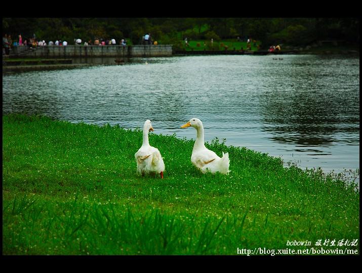 DSC_9727.jpg - 羅東運動公園