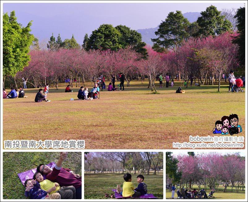 《 南投櫻花野餐 》南投暨南大學席座賞櫻 就像到日本一樣的賞櫻感受